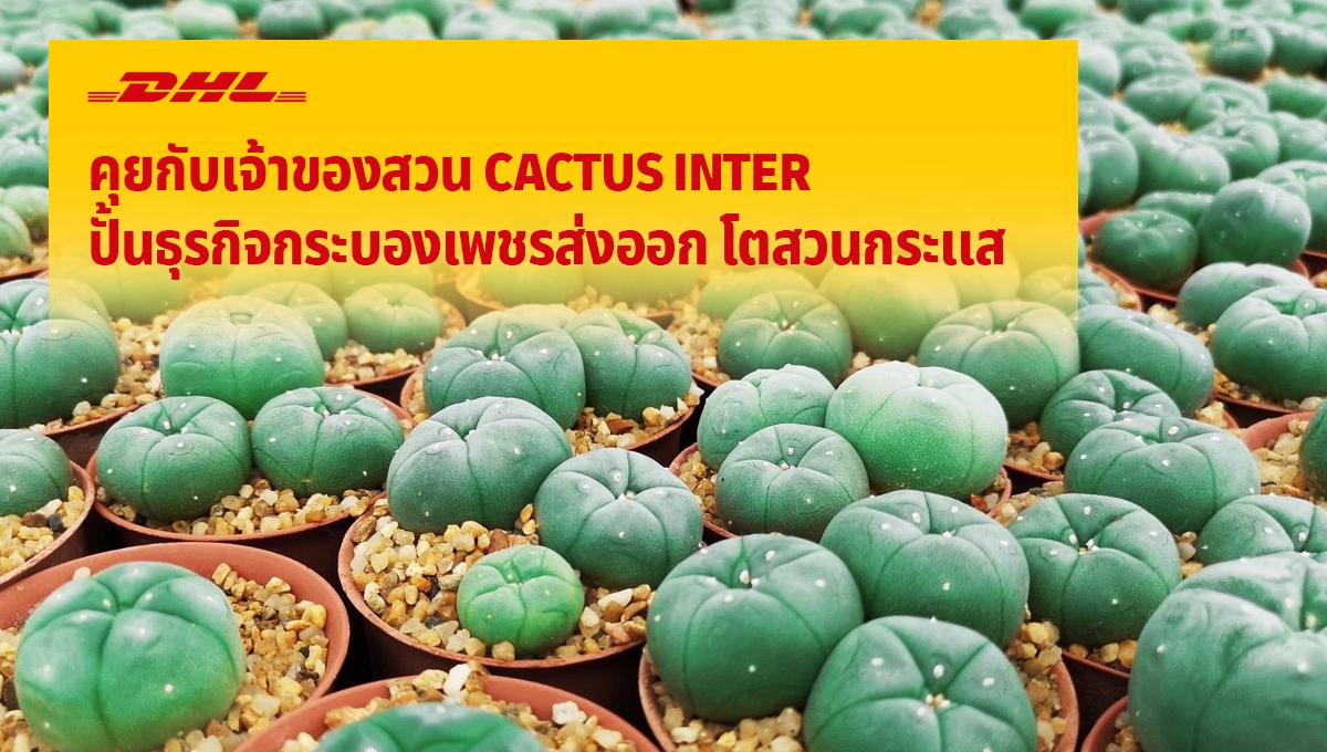 คุยกับเจ้าของสวน CACTUS INTER  ปั้นธุรกิจกระบองเพชรส่งออก โตสวนกระแสโควิด-19